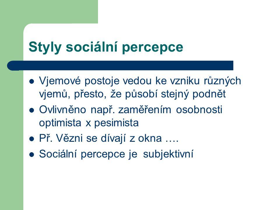 Styly sociální percepce
