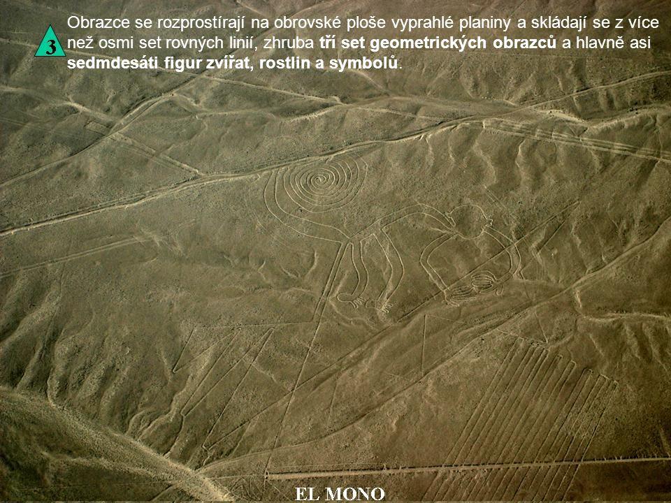 Obrazce se rozprostírají na obrovské ploše vyprahlé planiny a skládají se z více než osmi set rovných linií, zhruba tří set geometrických obrazců a hlavně asi sedmdesáti figur zvířat, rostlin a symbolů.