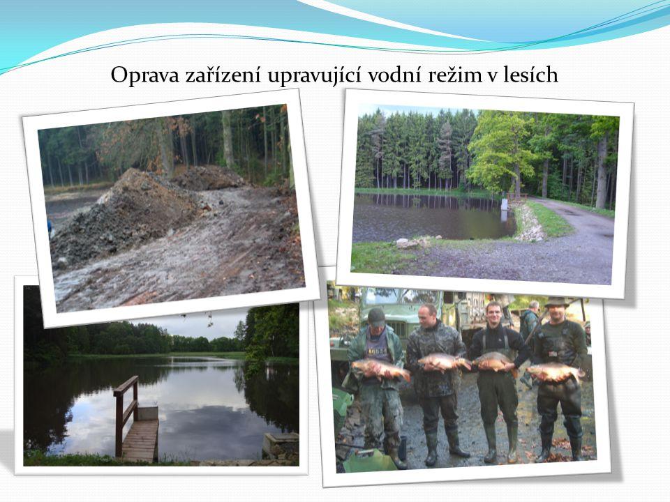 Oprava zařízení upravující vodní režim v lesích