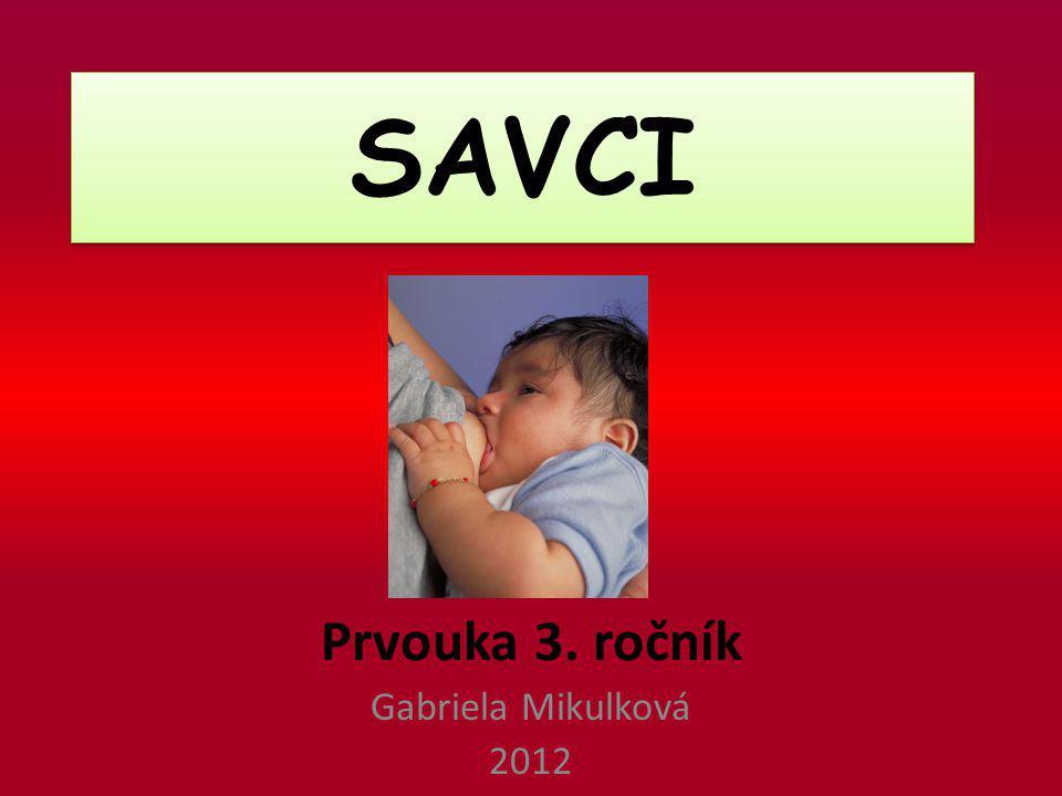Prvouka 3. ročník Gabriela Mikulková 2012