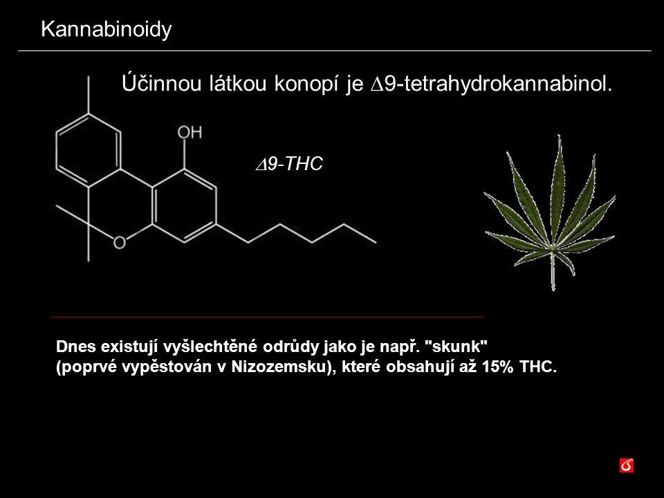 Účinnou látkou konopí je 9-tetrahydrokannabinol.