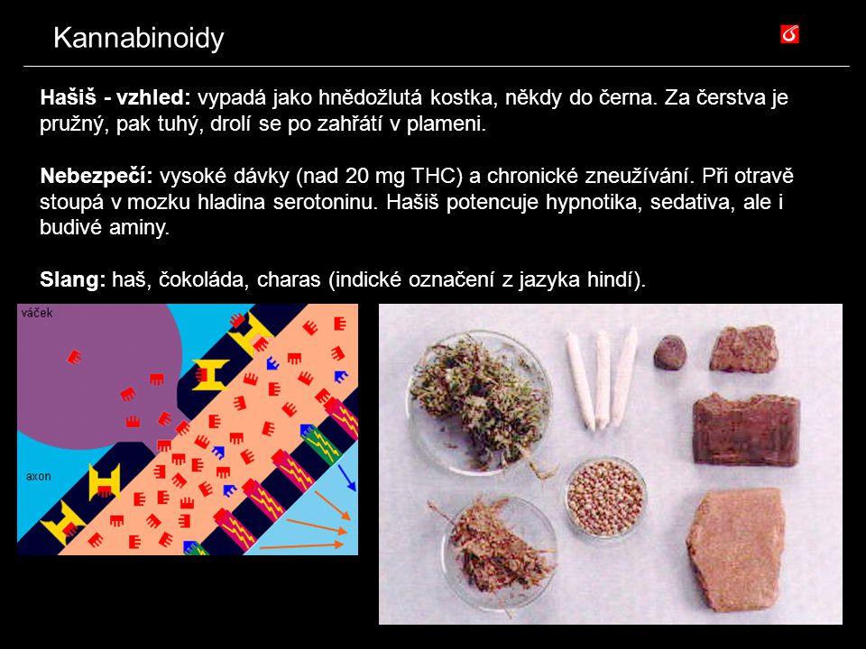 Kannabinoidy Hašiš - vzhled: vypadá jako hnědožlutá kostka, někdy do černa. Za čerstva je pružný, pak tuhý, drolí se po zahřátí v plameni.