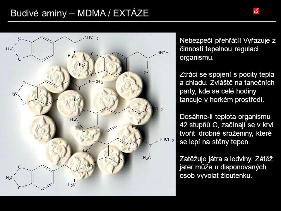Budivé aminy – MDMA / EXTÁZE