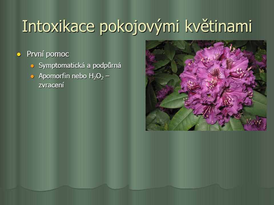 Intoxikace pokojovými květinami