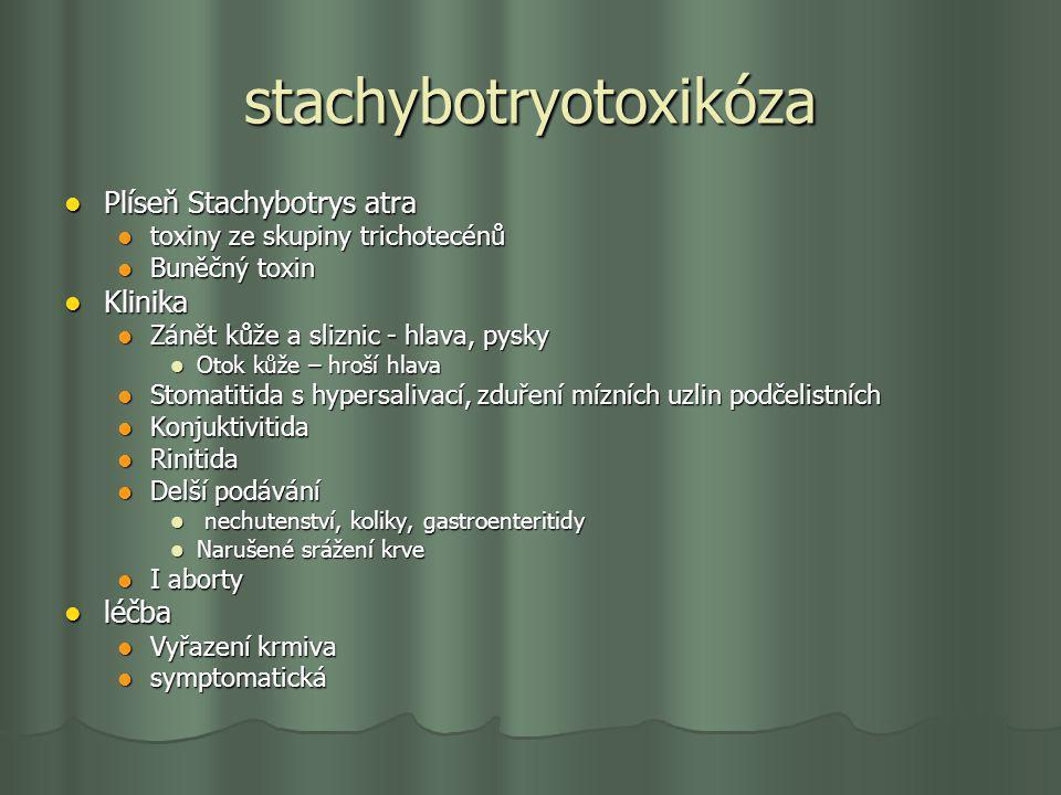 stachybotryotoxikóza