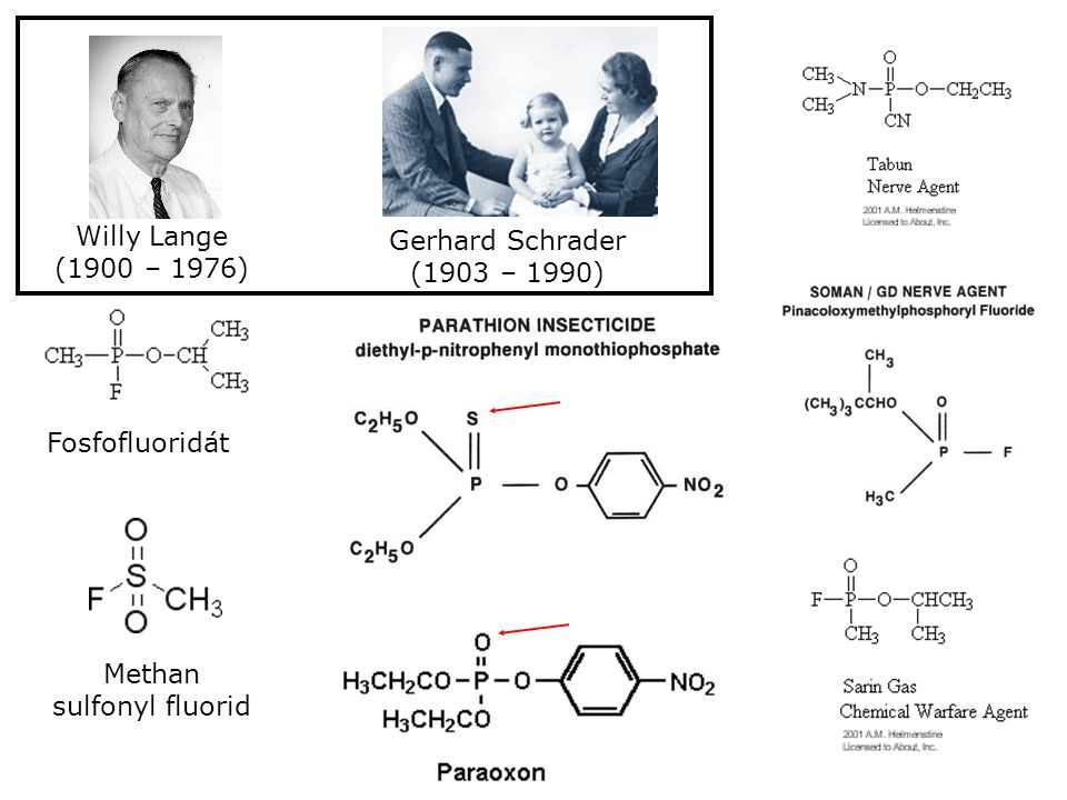 Methan sulfonyl fluorid
