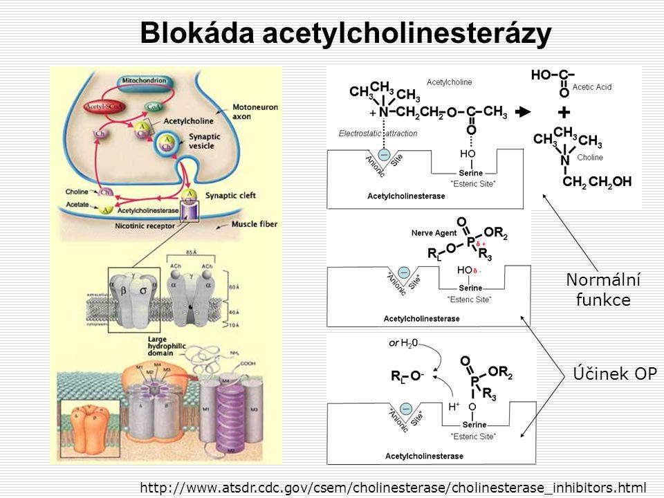 Blokáda acetylcholinesterázy