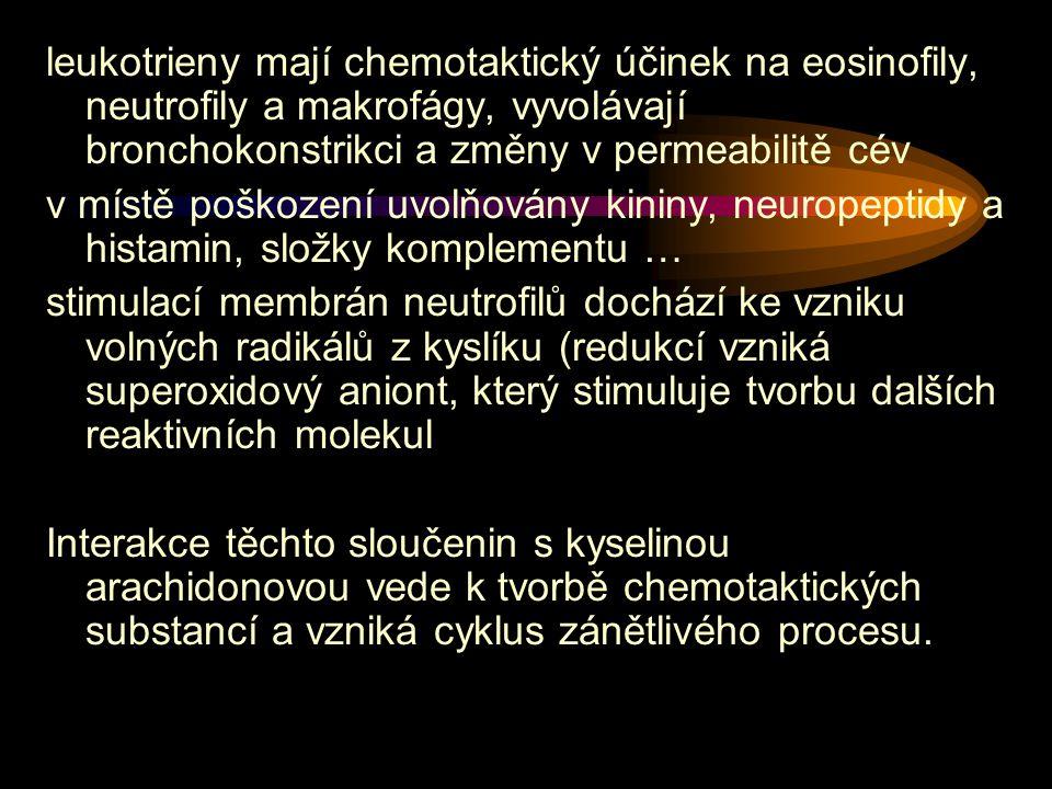 leukotrieny mají chemotaktický účinek na eosinofily, neutrofily a makrofágy, vyvolávají bronchokonstrikci a změny v permeabilitě cév
