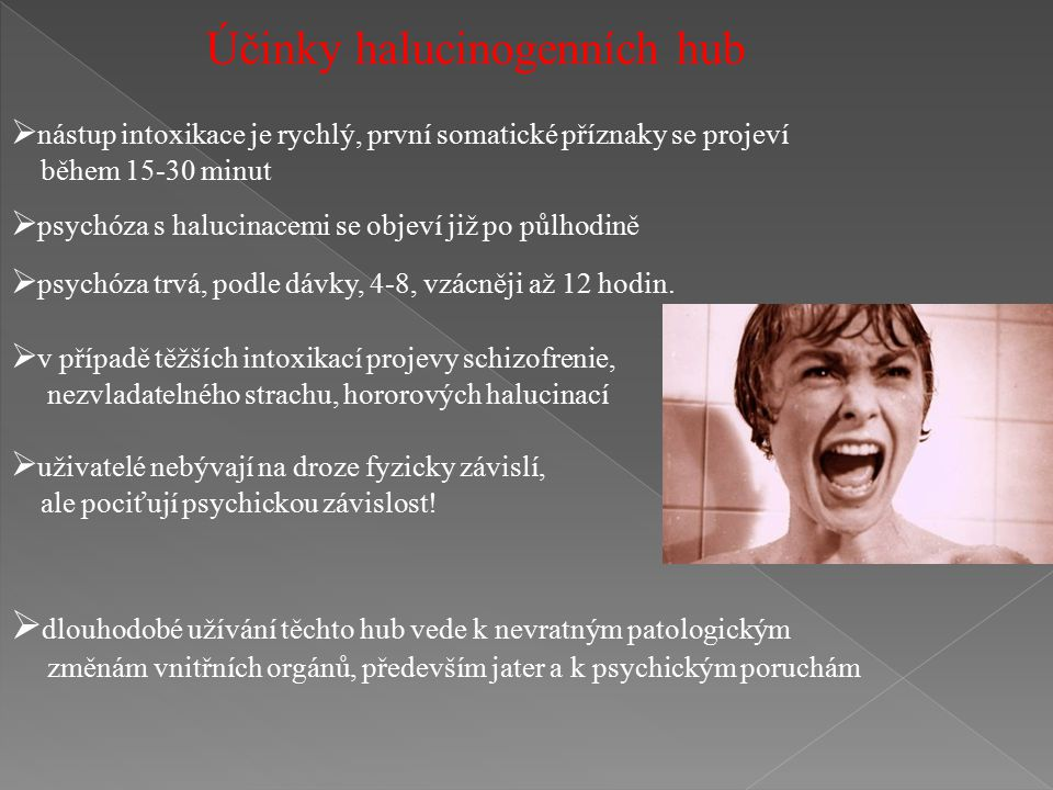 Účinky halucinogenních hub
