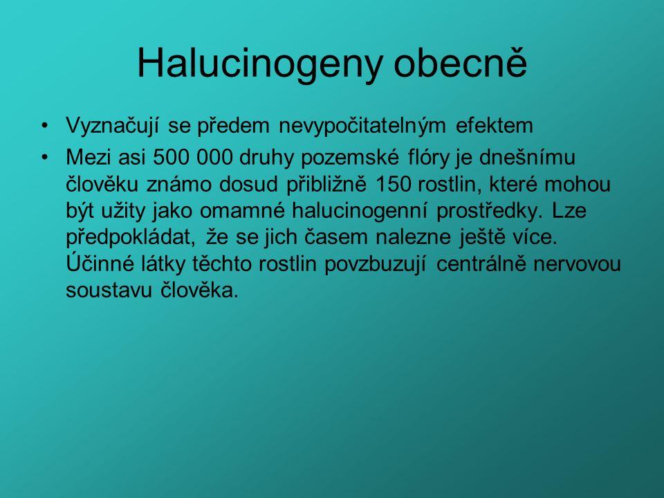 Halucinogeny obecně Vyznačují se předem nevypočitatelným efektem