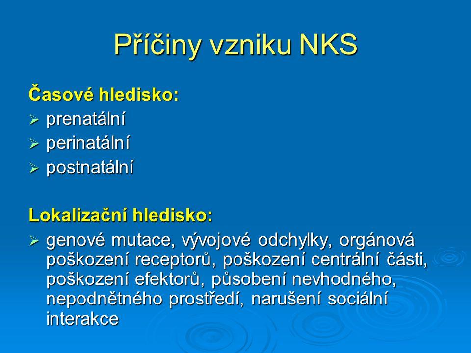 Příčiny vzniku NKS Časové hledisko: prenatální perinatální postnatální