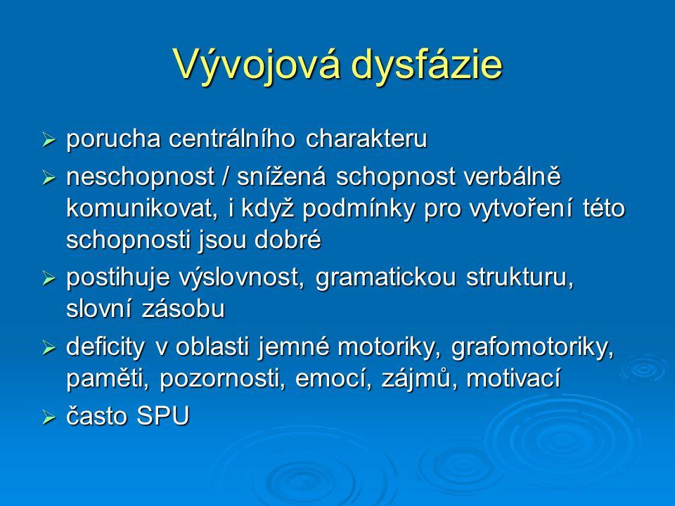 Vývojová dysfázie porucha centrálního charakteru