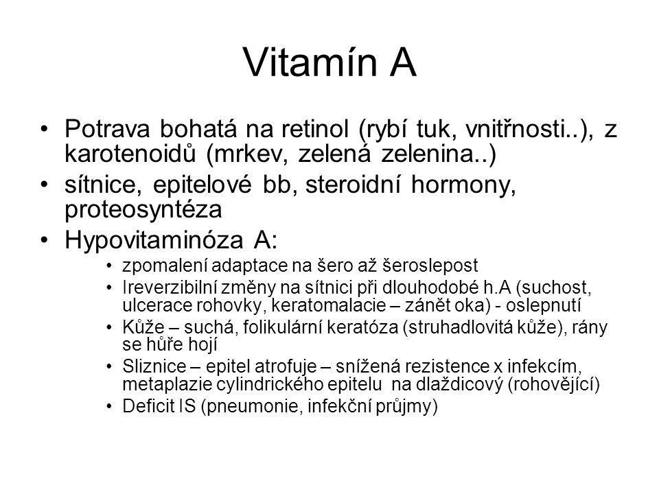 Vitamín A Potrava bohatá na retinol (rybí tuk, vnitřnosti..), z karotenoidů (mrkev, zelená zelenina..)