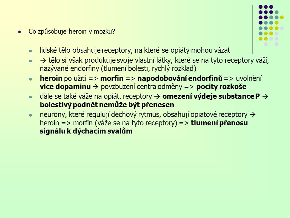 lidské tělo obsahuje receptory, na které se opiáty mohou vázat