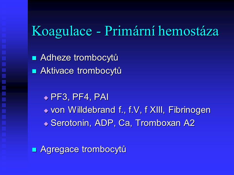 Koagulace - Primární hemostáza