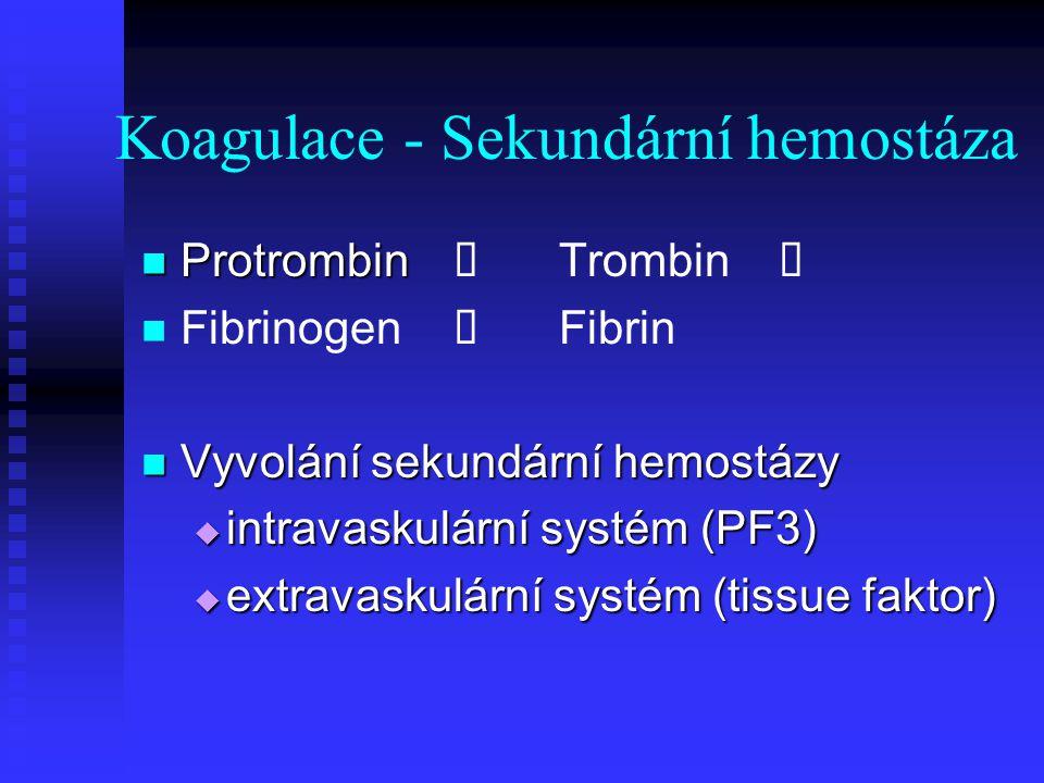 Koagulace - Sekundární hemostáza