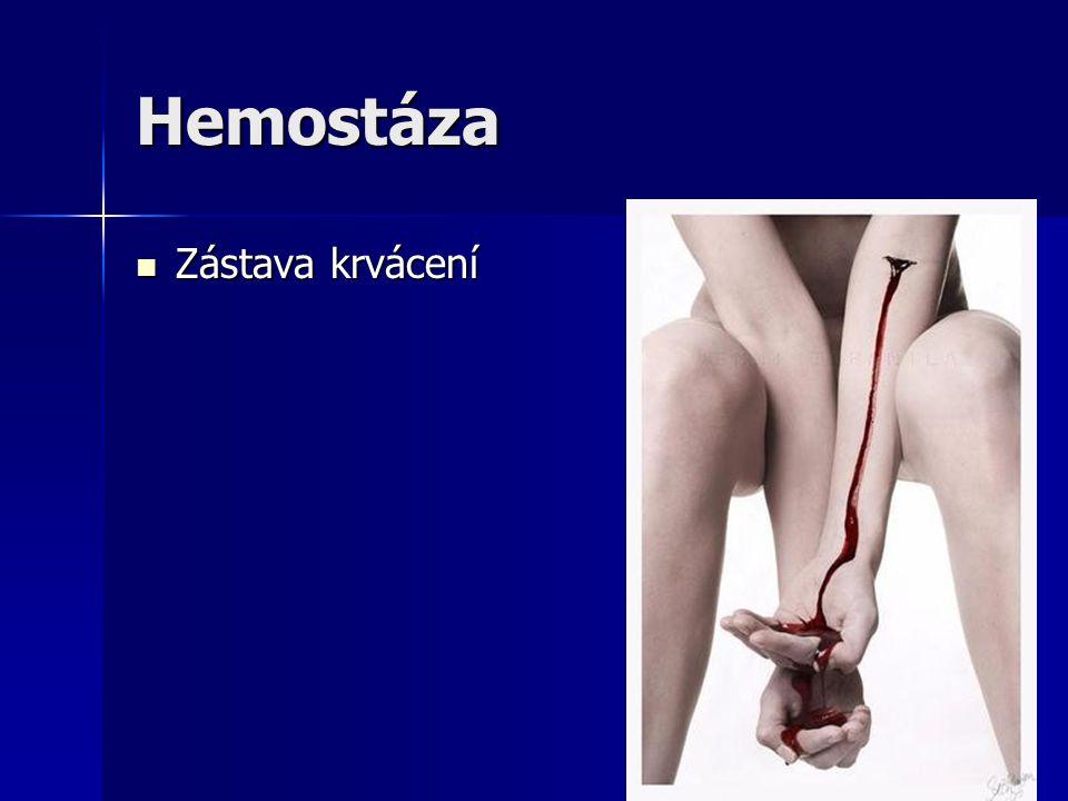 Hemostáza Zástava krvácení