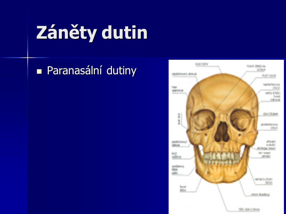 Záněty dutin Paranasální dutiny