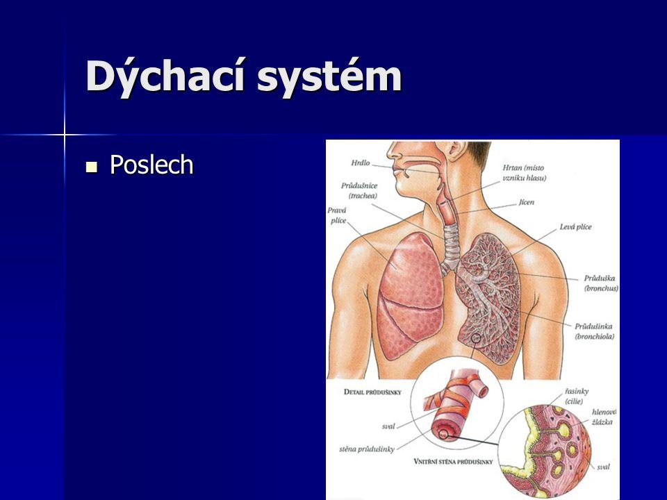 Dýchací systém Poslech