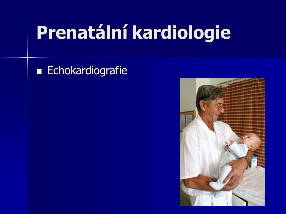Prenatální kardiologie