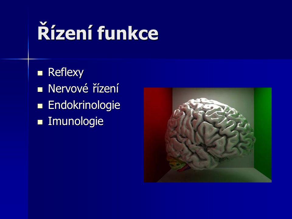 Řízení funkce Reflexy Nervové řízení Endokrinologie Imunologie