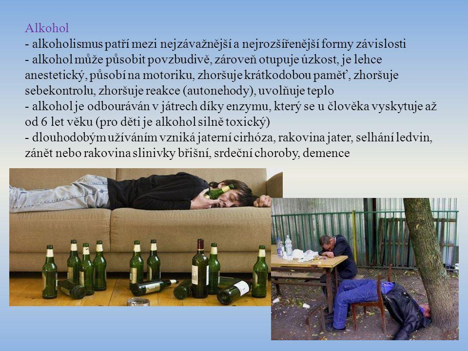 Alkohol - alkoholismus patří mezi nejzávažnější a nejrozšířenější formy závislosti.