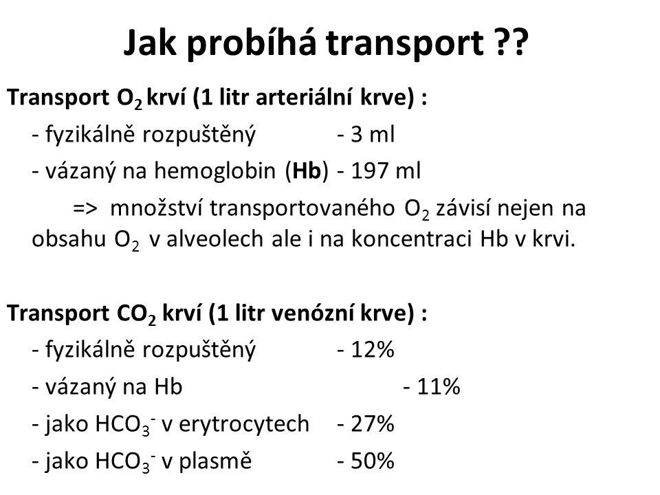 Jak probíhá transport