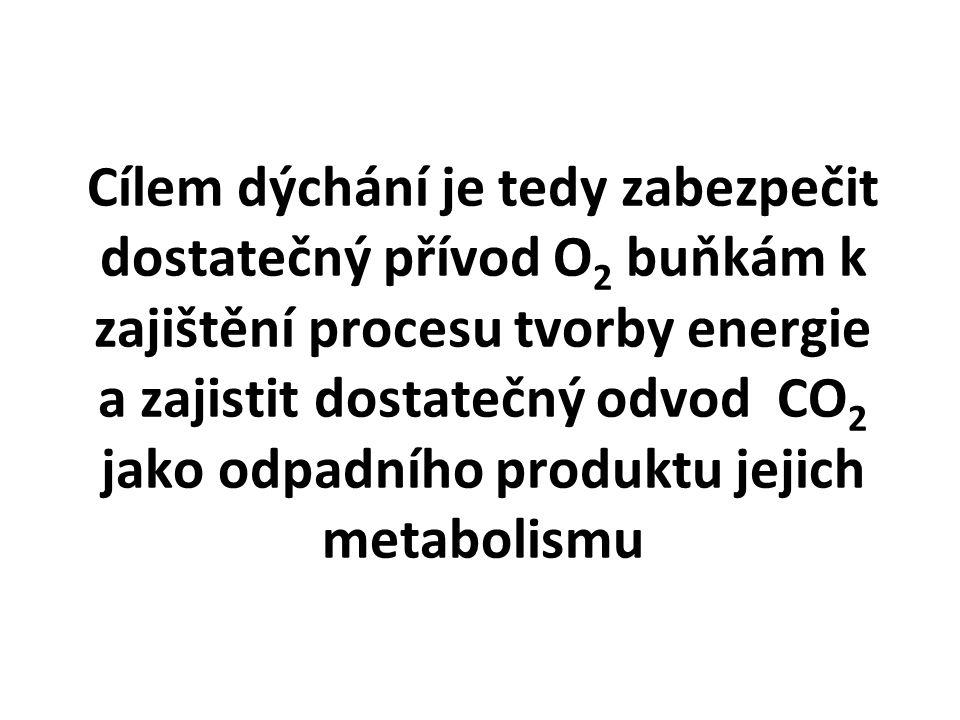 Cílem dýchání je tedy zabezpečit dostatečný přívod O2 buňkám k zajištění procesu tvorby energie a zajistit dostatečný odvod CO2 jako odpadního produktu jejich metabolismu