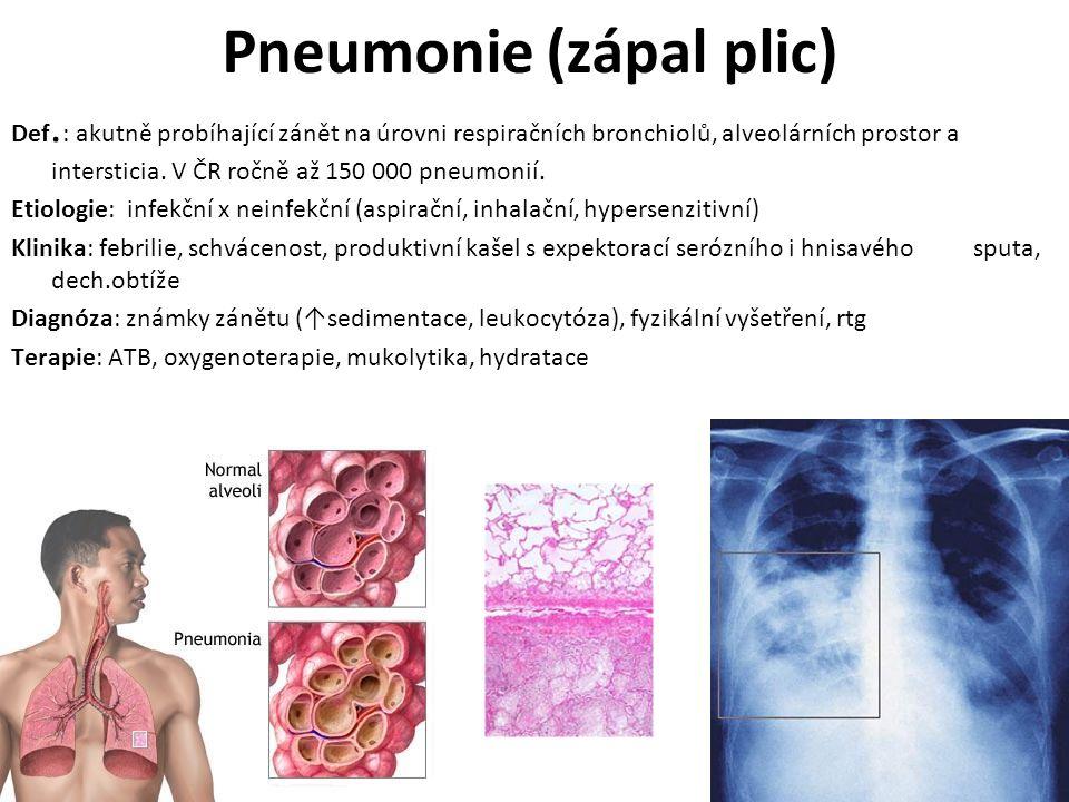 Pneumonie (zápal plic)