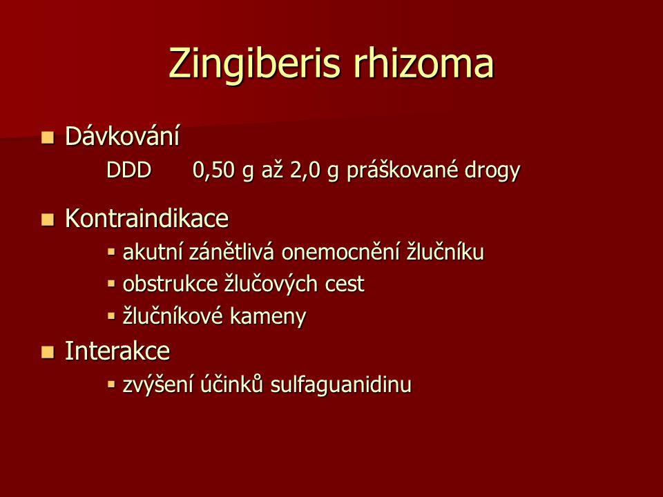 Zingiberis rhizoma Dávkování Kontraindikace Interakce