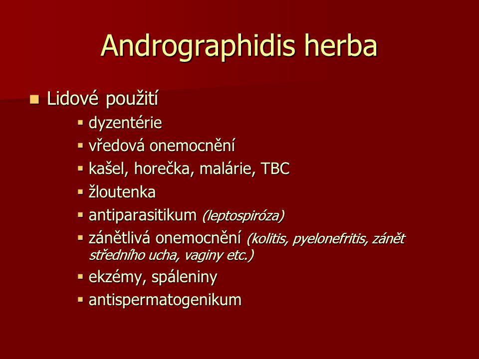 Andrographidis herba Lidové použití dyzentérie vředová onemocnění