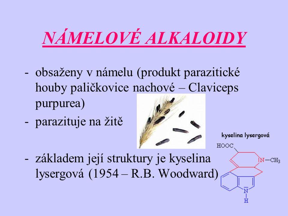 NÁMELOVÉ ALKALOIDY obsaženy v námelu (produkt parazitické houby paličkovice nachové – Claviceps purpurea)