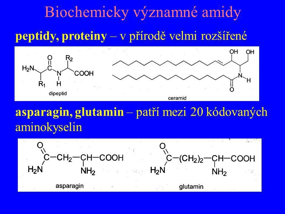 Biochemicky významné amidy