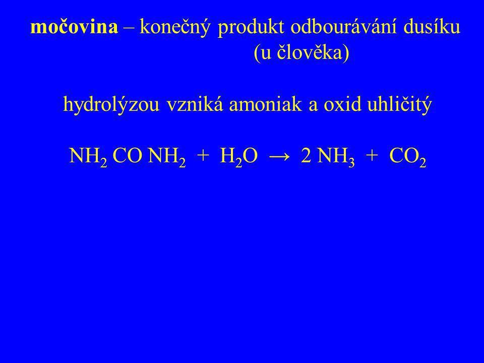 močovina – konečný produkt odbourávání dusíku (u člověka)