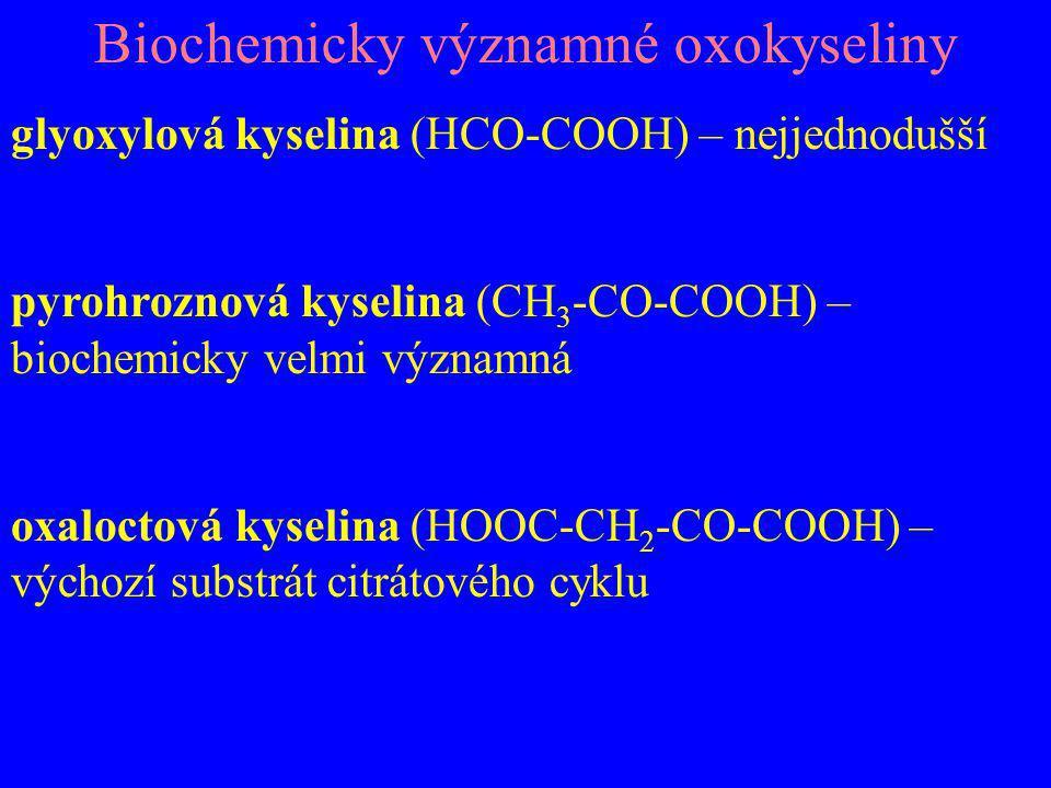 Biochemicky významné oxokyseliny