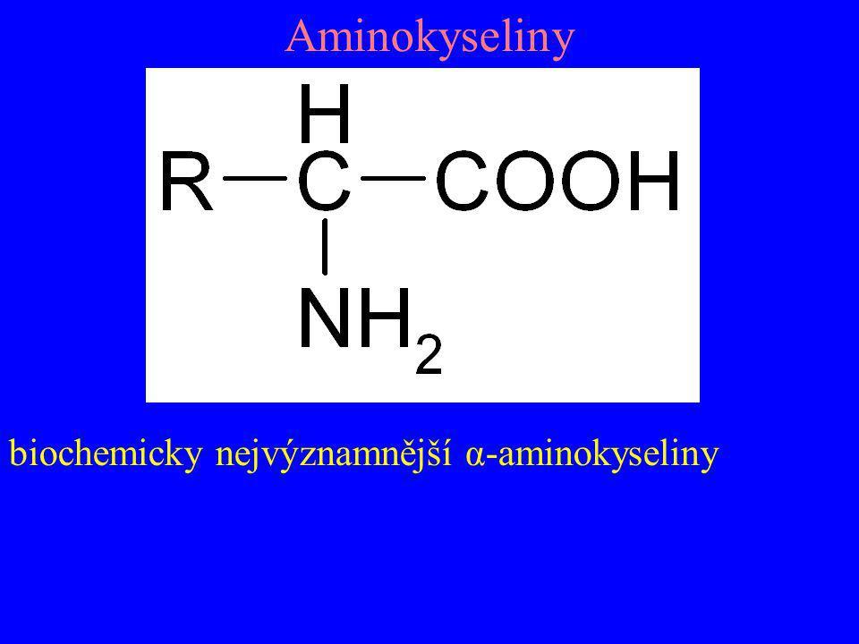 Aminokyseliny biochemicky nejvýznamnější α-aminokyseliny