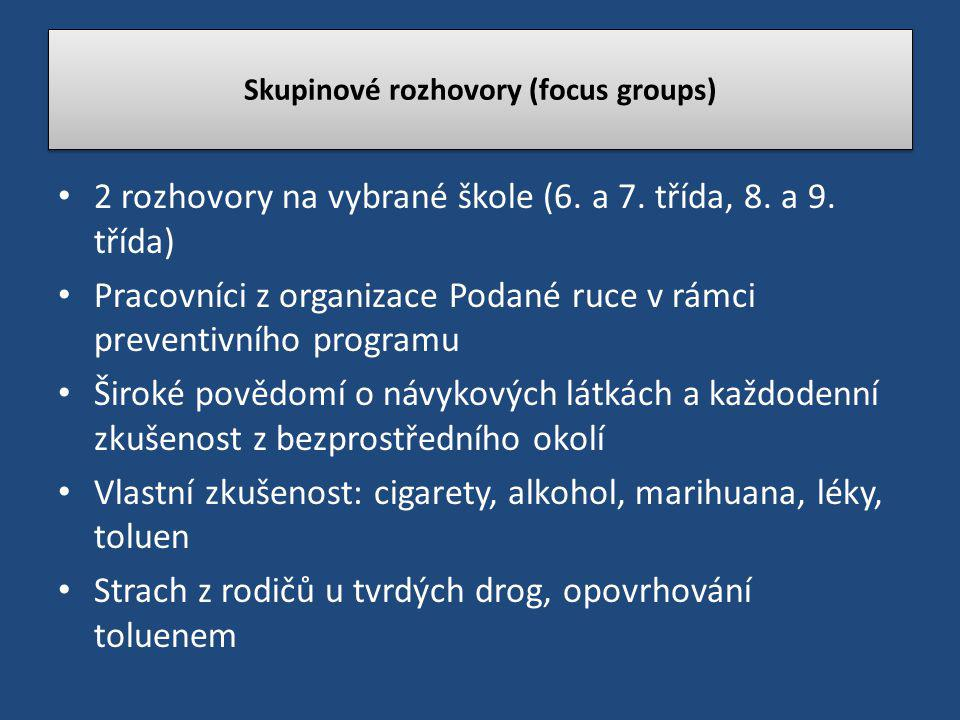 Skupinové rozhovory (focus groups)