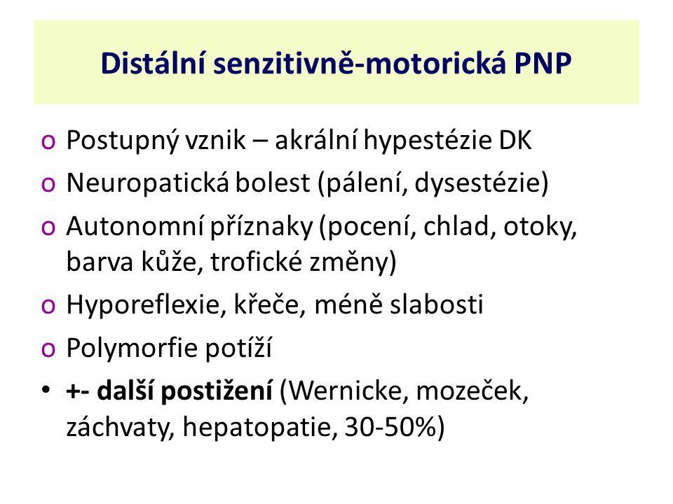 Distální senzitivně-motorická PNP