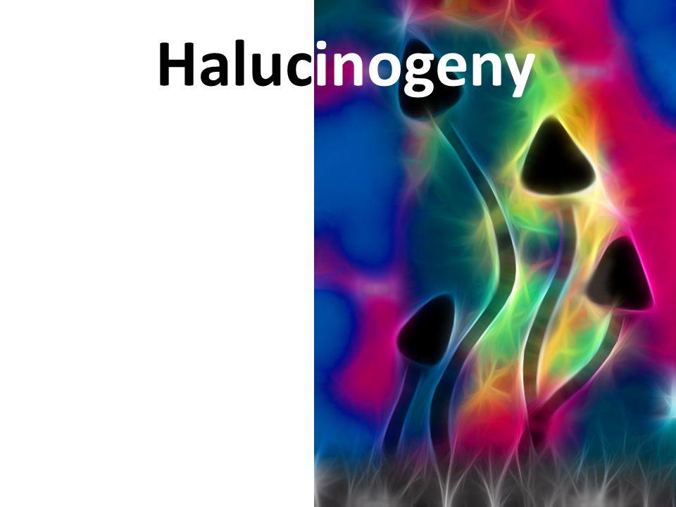 Halucinogeny