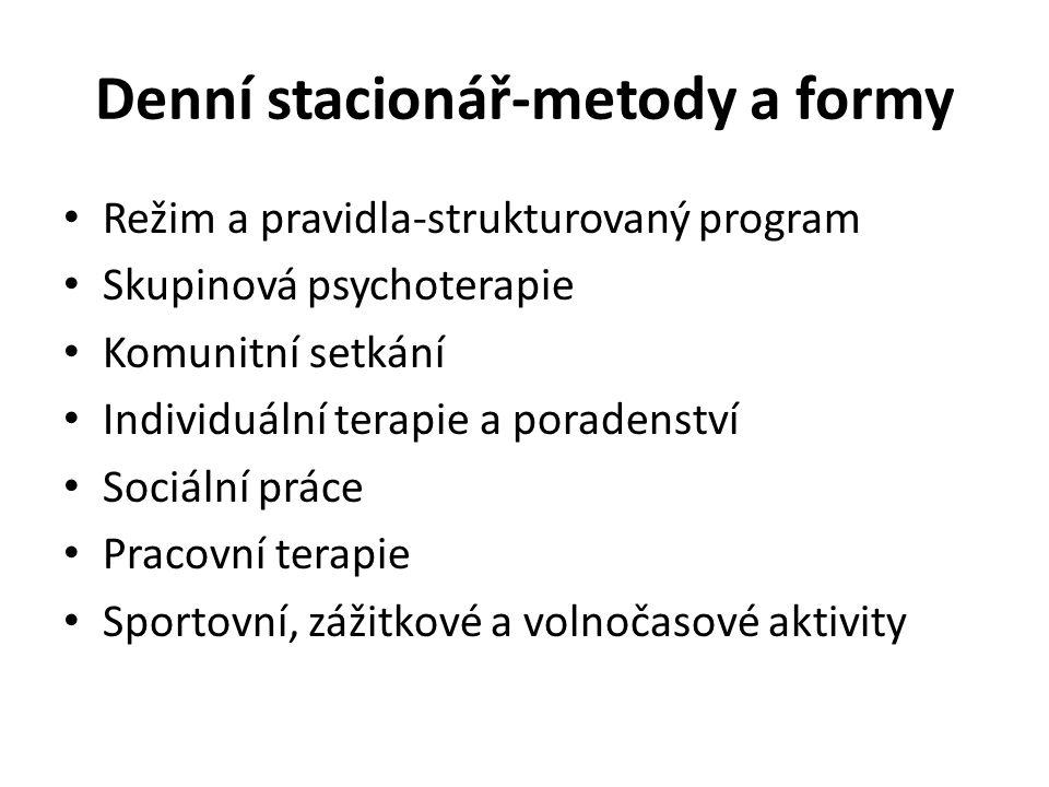 Denní stacionář-metody a formy