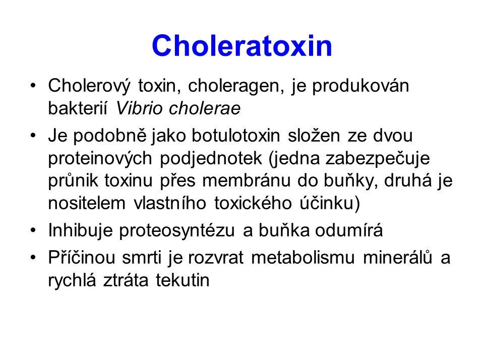 Choleratoxin Cholerový toxin, choleragen, je produkován bakterií Vibrio cholerae.