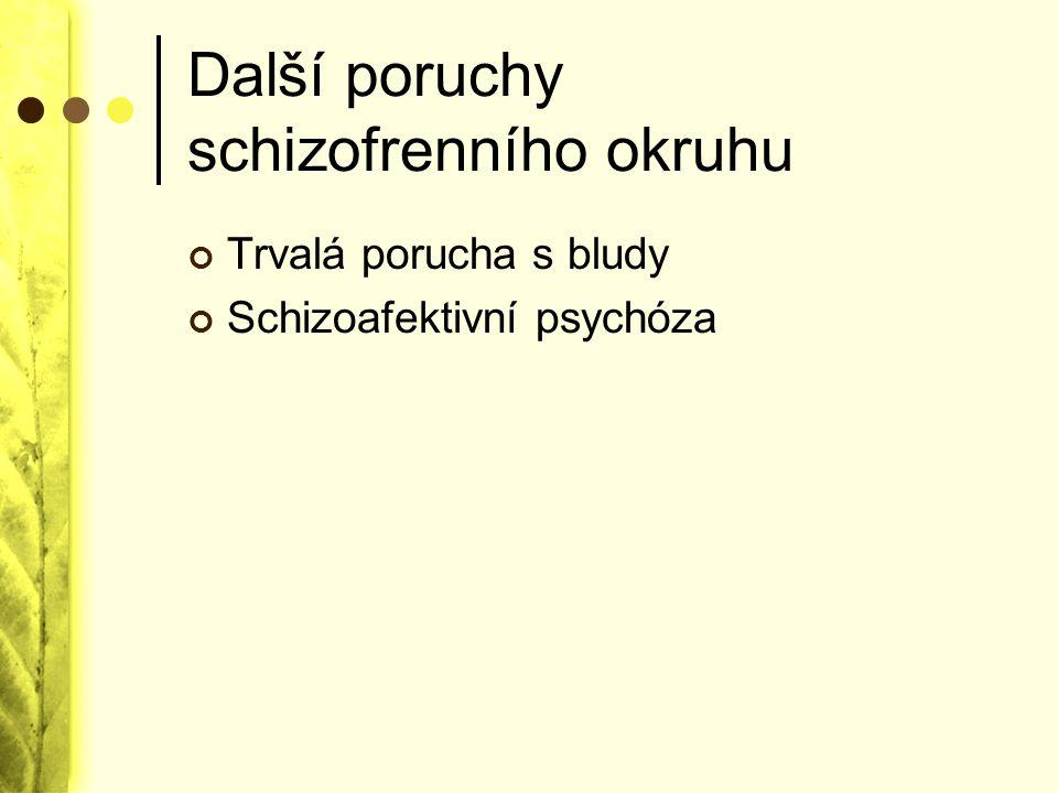 Další poruchy schizofrenního okruhu