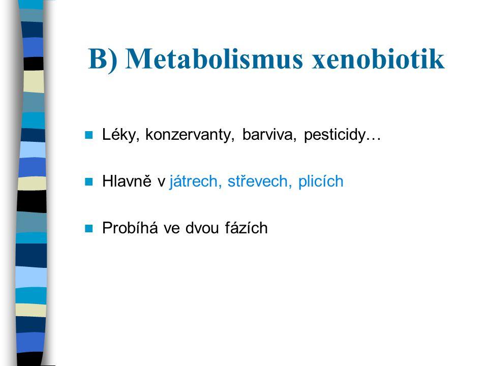 B) Metabolismus xenobiotik
