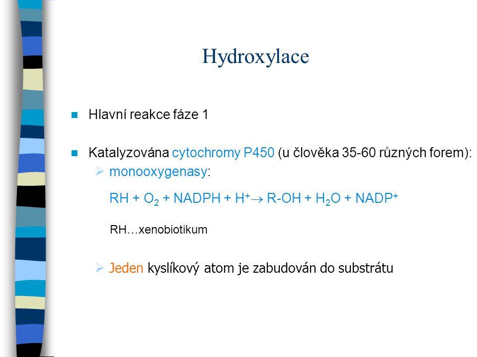 Hydroxylace Hlavní reakce fáze 1