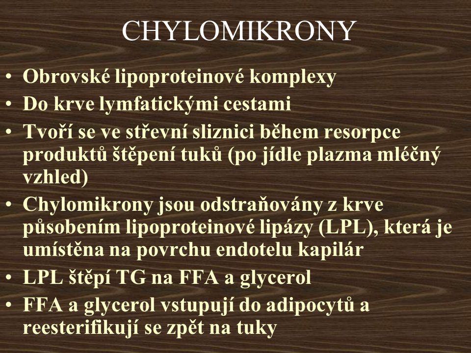 CHYLOMIKRONY Obrovské lipoproteinové komplexy