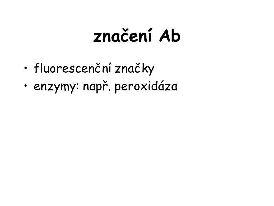 značení Ab fluorescenční značky enzymy: např. peroxidáza