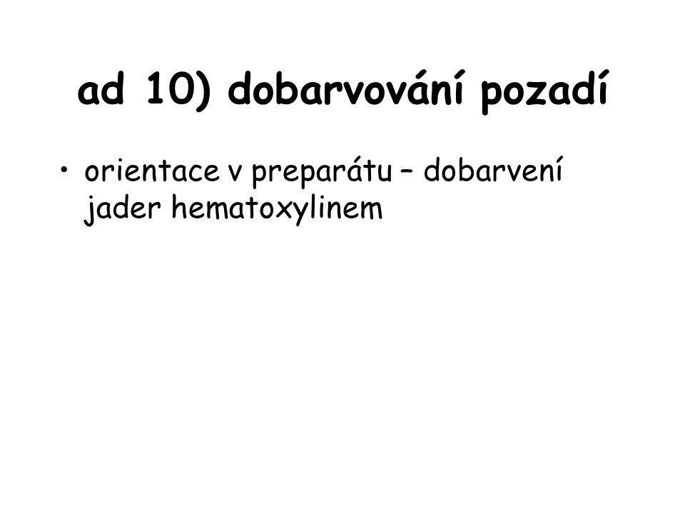 ad 10) dobarvování pozadí