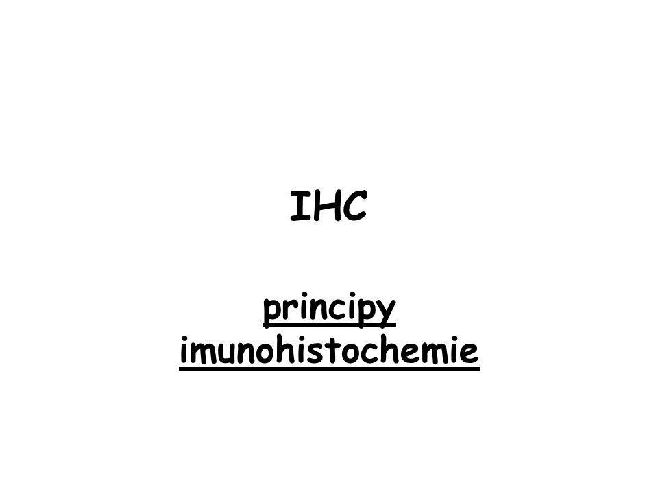 principy imunohistochemie