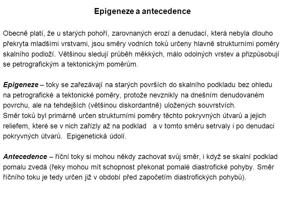 Epigeneze a antecedence