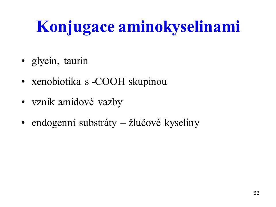 Konjugace aminokyselinami